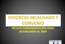 DIVORCIO INCAUSADO