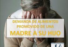 DEMANDA DE ALIMENTOS PROMOVIDO DE UNA MADRE A SU HIJO