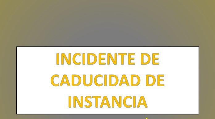 INCIDENTE DE CADUCIDAD DE INSTANCIA