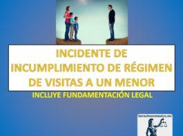 INCIDENTE DE INCUMPLIMIENTO DE RÉGIMEN DE VISITAS A UN MENOR