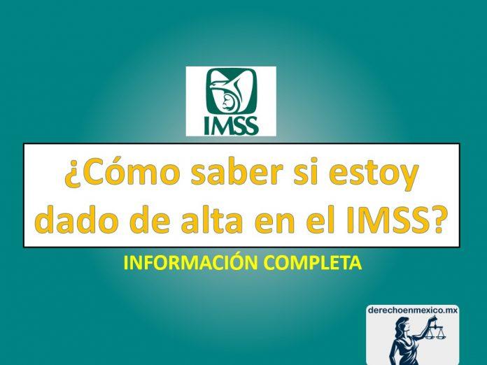 ✅ ¿Cómo saber si estoy dado de alta en el IMSS?